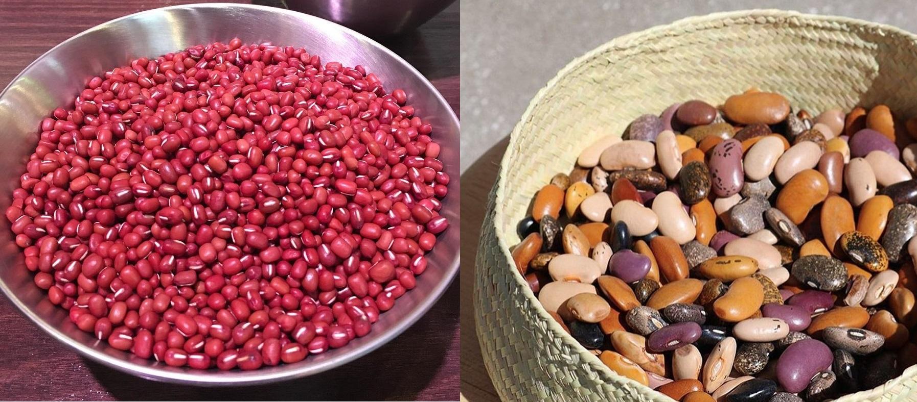 giảm béo toàn thân bằng các loại đậu