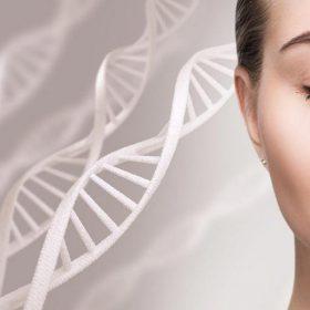 Trẻ hóa da bằng tế bào gốc thực vật - Đâu mới là phương pháp đáng lựa chọn?