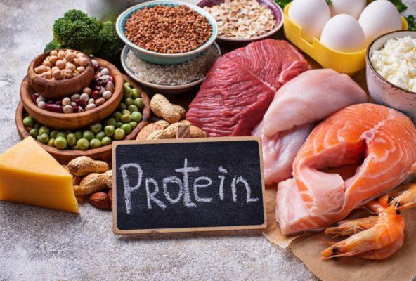 20200516 154444 467791 protein1.max 1800x1800 1